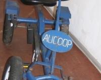 1 Aucoop Go-Cart vorher